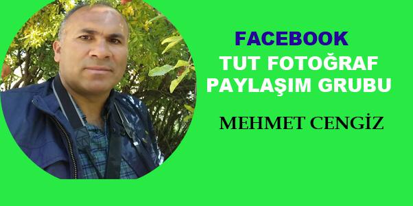 TUT İLÇESİNİN 3 YILLIK FOTOĞRAF ARŞİVİ BU GRUPTA !